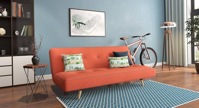 Zehnloch Sofa Cum Bed (Glory Rust) by Urban Ladder - Full View Design 1 - 318799