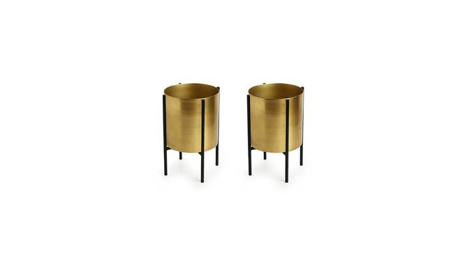 Janani Planter-Set of 4 (Gold) by Urban Ladder - Front View Design 1 - 319137
