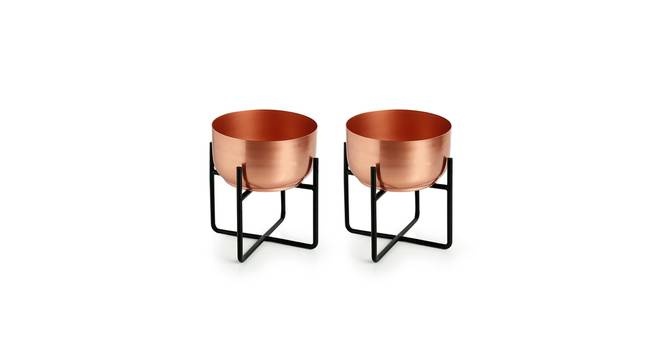 Elina Planter-Set of 4 (Copper) by Urban Ladder - Front View Design 1 - 319143