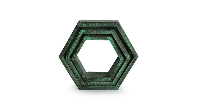 Namya Wall Decor(hexagon) (Teal) by Urban Ladder - Front View Design 1 - 319376