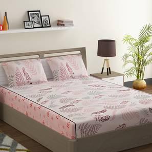 Jay bedsheet set pink white king normal lp