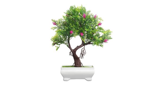 Echo Artificial Plant by Urban Ladder - Design 1 Top View - 324185