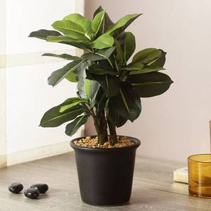 Joe artificial plant with pot lp