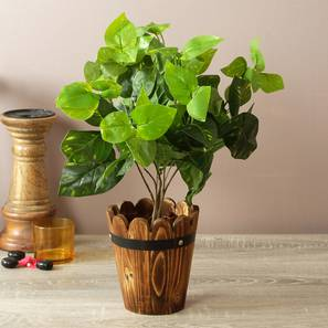 Irene artificial plant with pot lp