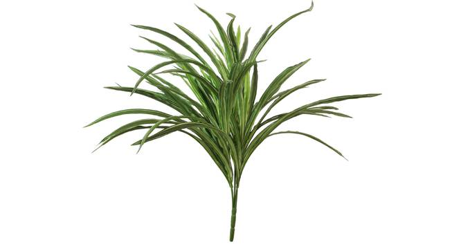 Bob Artificial Plant With Pot (Green) by Urban Ladder - Front View Design 1 - 325671