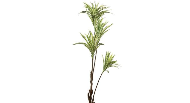 Howard Artificial Plant With Pot (Green) by Urban Ladder - Front View Design 1 - 325677