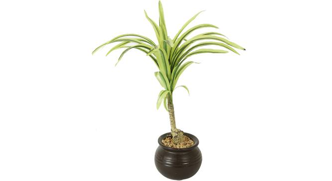 Foss Artificial Plant With Pot (Green) by Urban Ladder - Front View Design 1 - 325685