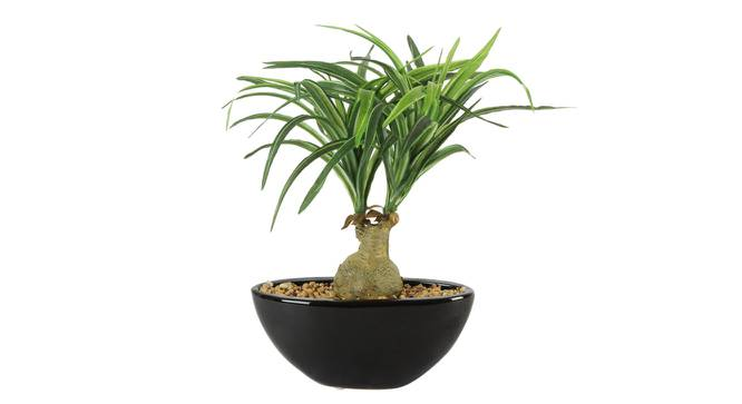 Simon Artificial Plant With Pot (Green) by Urban Ladder - Front View Design 1 - 325697