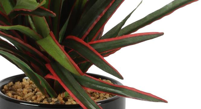 Watson Artificial Plant With Pot (Black) by Urban Ladder - Cross View Design 1 - 325701
