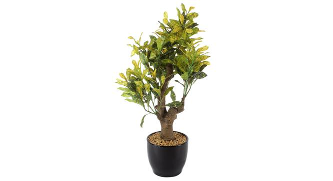 Susan Artificial Plant With Pot (Green) by Urban Ladder - Front View Design 1 - 325703