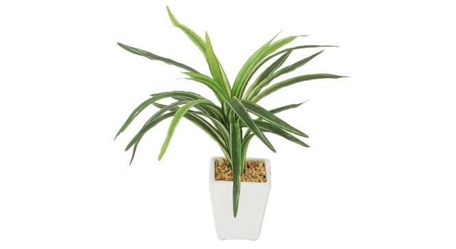 Ruth Artificial Plant With Pot (Green) by Urban Ladder - Front View Design 1 - 325709