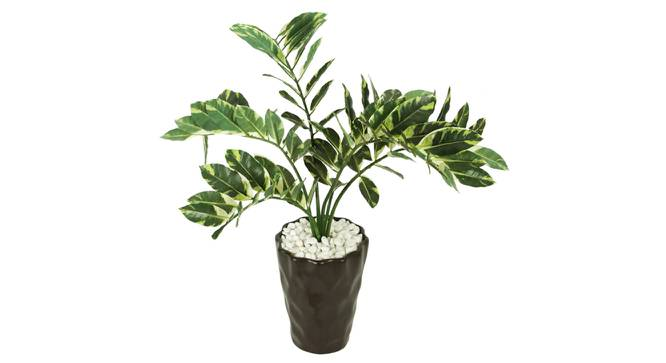 Wanda Artificial Plant With Pot (Green) by Urban Ladder - Front View Design 1 - 325715