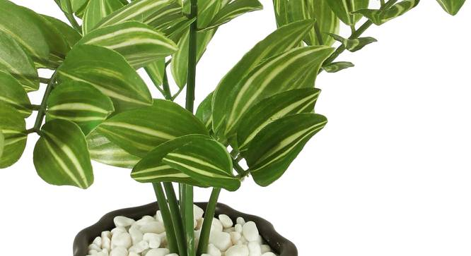 Wanda Artificial Plant With Pot (Green) by Urban Ladder - Cross View Design 1 - 325719