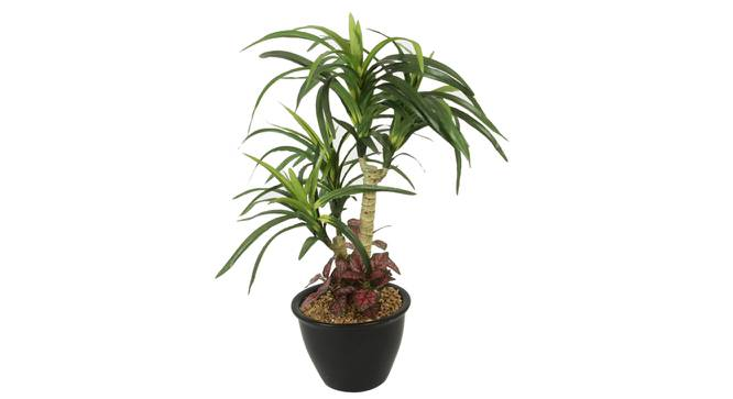 Amanda Artificial Plant With Pot (Green) by Urban Ladder - Front View Design 1 - 325727