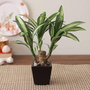 Alice2 artificial plant with pot lp