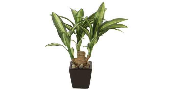 Alice Artificial Plant (Green) by Urban Ladder - Front View Design 1 - 325736