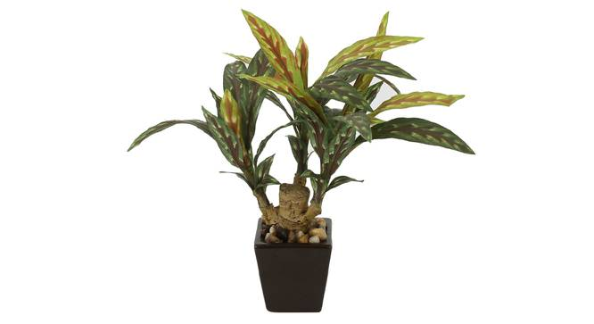 Alice Artificial Plant (Green) by Urban Ladder - Front View Design 1 - 325742