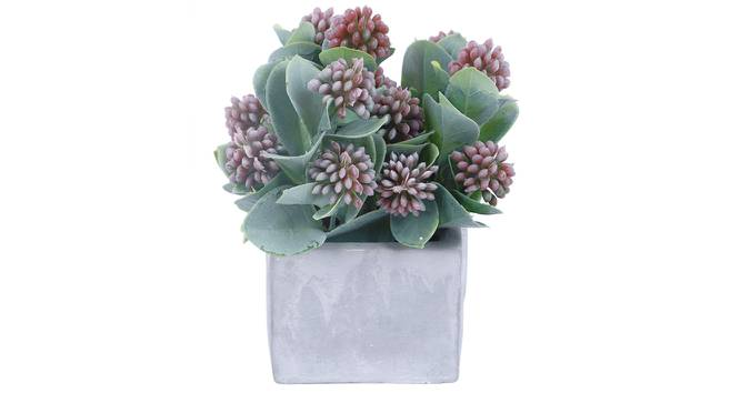 Jesse Artificial Plant With Pot by Urban Ladder - Cross View Design 1 - 325749