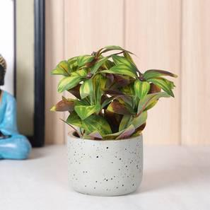 Rivera artificial plant with pot lp