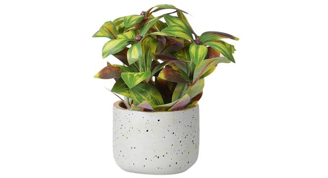 Rivera Artificial Plant With Pot by Urban Ladder - Front View Design 1 - 325799