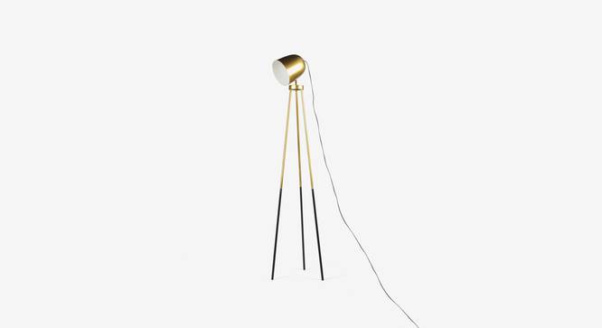 Rhea  Floor Lamp (Black Finish) by Urban Ladder - Design 1 Top View - 327934