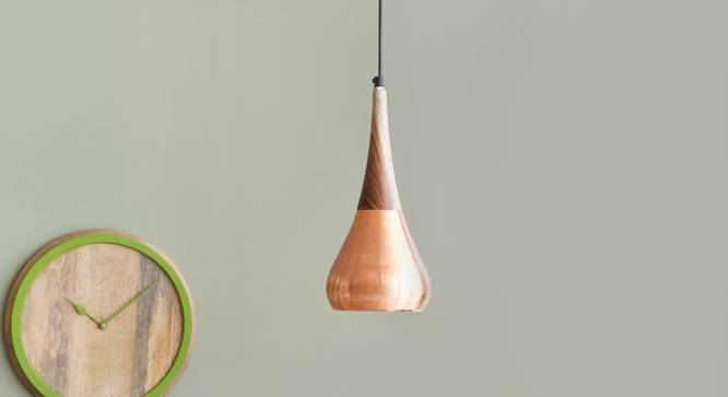 Avery  Hanging Lamp Copper (Black Finish) by Urban Ladder - Design 1 Details - 327943