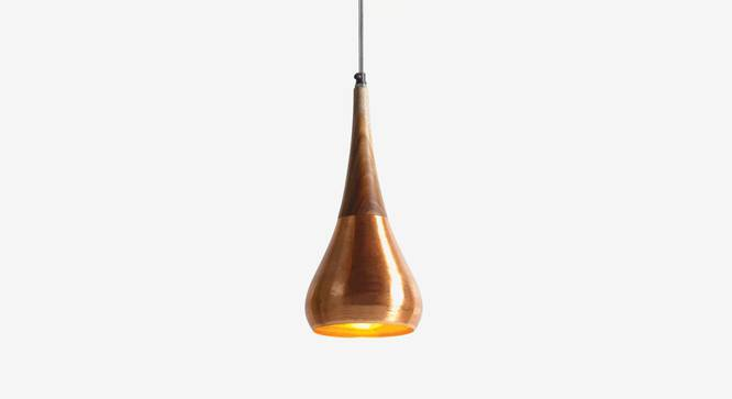 Avery  Hanging Lamp Copper (Black Finish) by Urban Ladder - Design 1 Top View - 327944