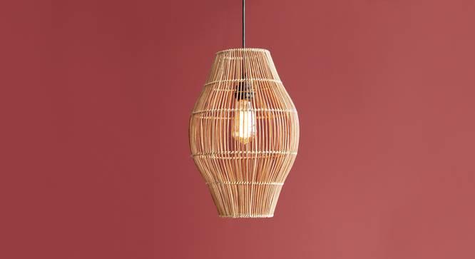 Kaya Oval Hanging Lamp Small (Black Finish) by Urban Ladder - Design 1 Details - 327976