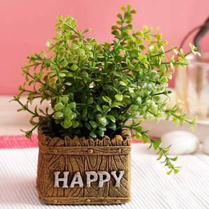 Dugan white artificial plant lp