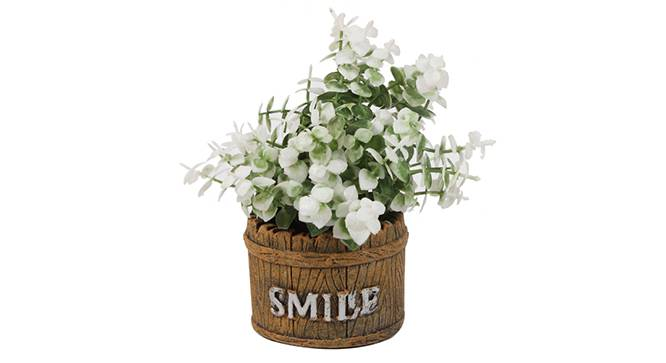 Aura Artificial Plant (White) by Urban Ladder - Front View Design 1 - 330446