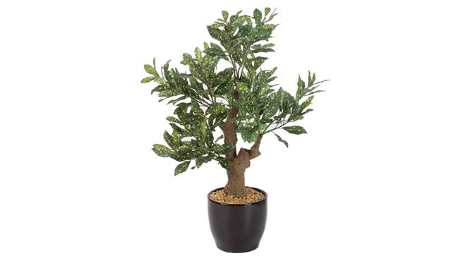 Altis Artificial Plant (Green) by Urban Ladder - Front View Design 1 - 330461