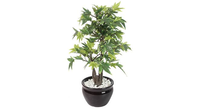 Triga Artificial Plant (Green) by Urban Ladder - Front View Design 1 - 330473