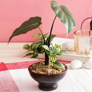 Broad green artificial plant lp