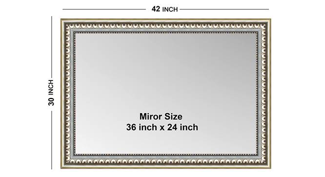 Elina Mirror (Silver) by Urban Ladder - Front View Design 1 - 331409