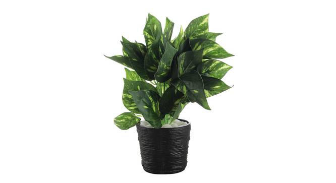 Berna Artificial Plant by Urban Ladder - Front View Design 1 - 335354