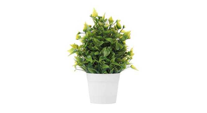 Astair Artificial Plant by Urban Ladder - Front View Design 1 - 335355