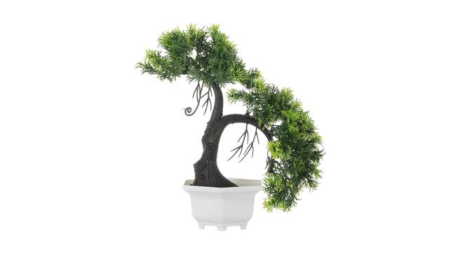 Daemyn Artificial Plant by Urban Ladder - Front View Design 1 - 335357