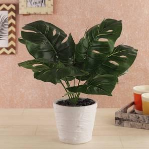 Irena artificial plant grey lp