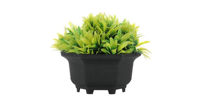 Ines Artificial Plant by Urban Ladder - Front View Design 1 - 335420