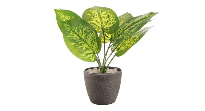 Ione Artificial Plant by Urban Ladder - Front View Design 1 - 335421
