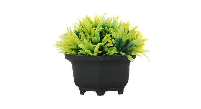 Ines Artificial Plant by Urban Ladder - Cross View Design 1 - 335429