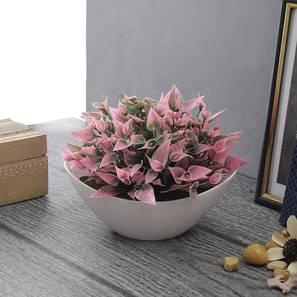 Juliette artificial plant white lp