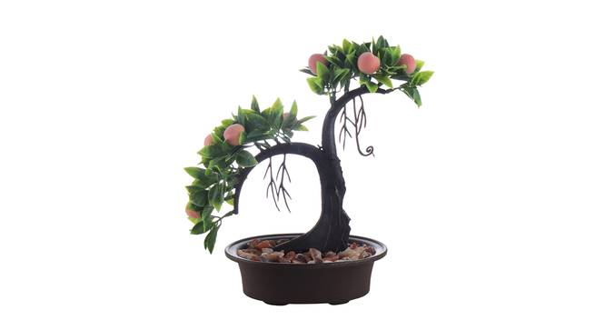 Lois Artificial Plant by Urban Ladder - Front View Design 1 - 335556
