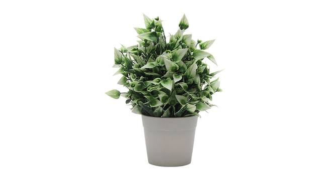 Kimber Artificial Plant by Urban Ladder - Cross View Design 1 - 335558