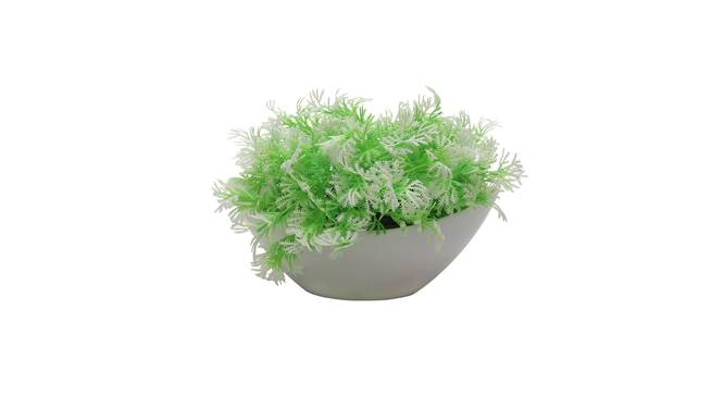 Marius Artificial Plant by Urban Ladder - Front View Design 1 - 335606
