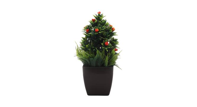 Mercy Artificial Plant by Urban Ladder - Front View Design 1 - 335625