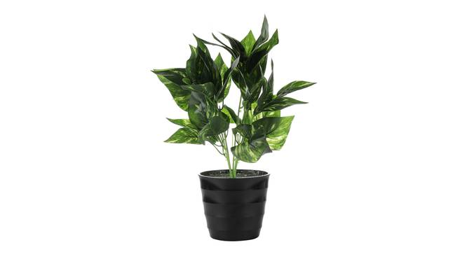 Zayne Artificial Plant by Urban Ladder - Cross View Design 1 - 335753
