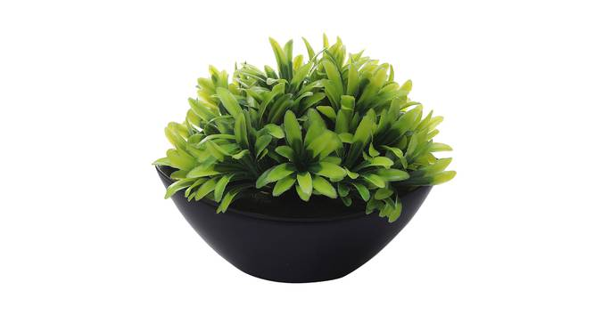 Justice Artificial Plant by Urban Ladder - Front View Design 1 - 335776