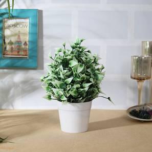 Kimber artificial plant white lp