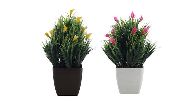 Marigold Artificial Plant by Urban Ladder - Front View Design 1 - 335831